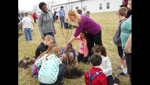 Fun planting trees.