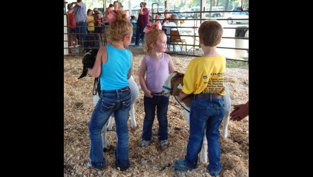 The Pee Wee's show their goats at the Caldwell County Fair.