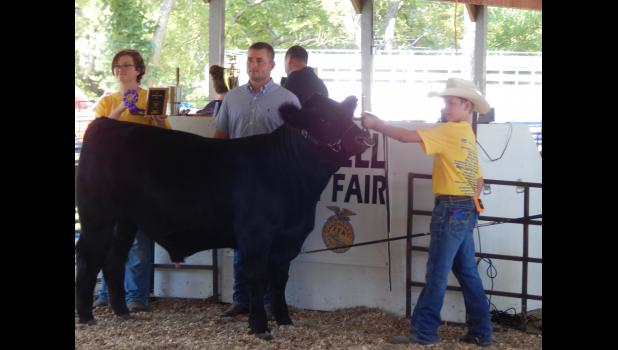 Gage Swindler shows off his Grand Champion Bull.