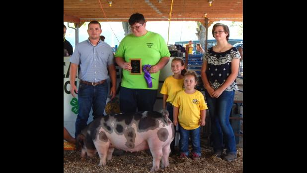 Chase Bowen of Hamilton won the Overall Champion Gilt with his spotted Gilt.