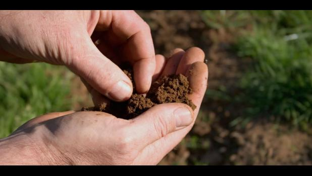 Not all topsoil is created equal.