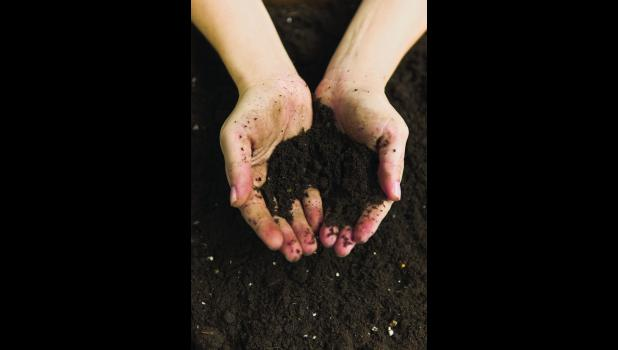 Healthy soils reduce production costs.