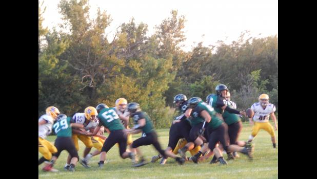 Polo Panthers will be taking on the Maysville Wolverines at Homecoming