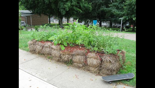 Straw bale gardening offers gardeners options in many locations. The key to success is conditioning of the bales. Photo by Flickr