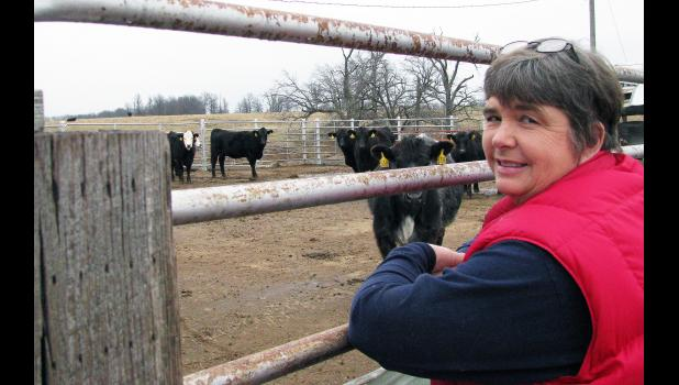 MU College of Veterinary Medicine graduate Imogene Latimer uses research from MU Extension to improve cattle herds in northeastern Missouri. Photo by Linda