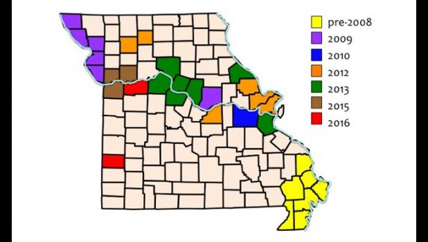 Palmer amaranth is prevalent in the Missouri Bootheel, but since 2008 it has spread north into more than two dozen additional counties.