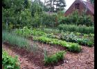 Mulches help make gardening more sustainable.